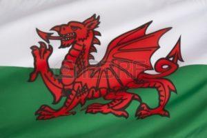 24335942-de-vlag-van-wales-in-het-verenigd-koninkrijk-de-vlag-bevat-de-rode-draak-van-cadwaladr-koning-van-gw-300x200