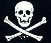 skullenbones322ta8